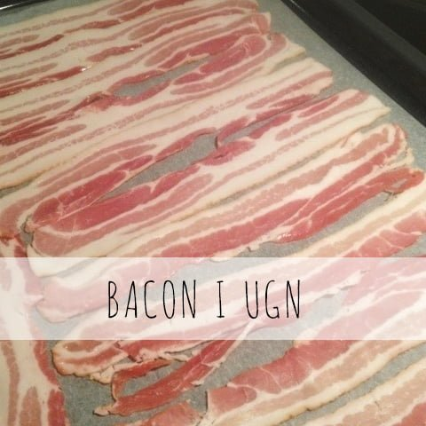 bacon-i-ugn