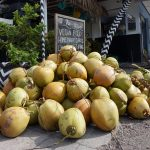 bali canggu coconuts