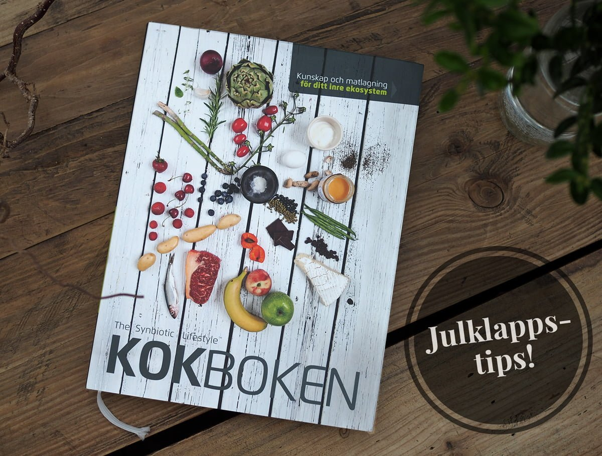 the synbiotic lifestyle kokboken