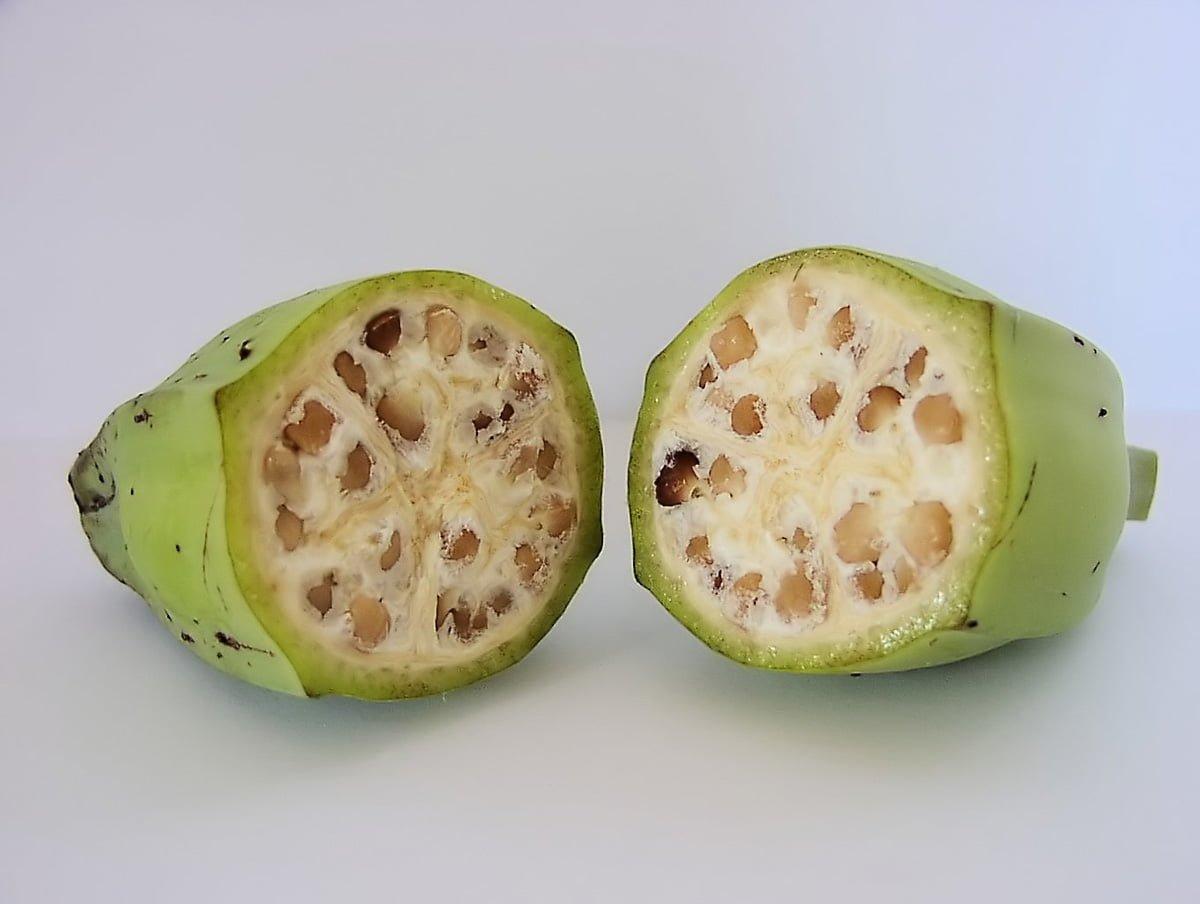 frukt och grönsaker förr och nu