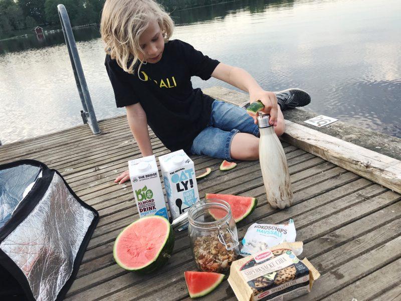 picknick hofsnäs