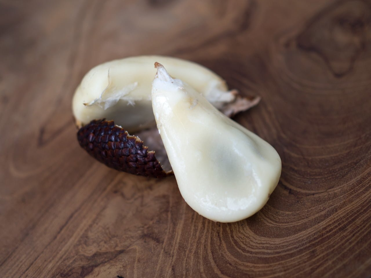 snakefruit salak