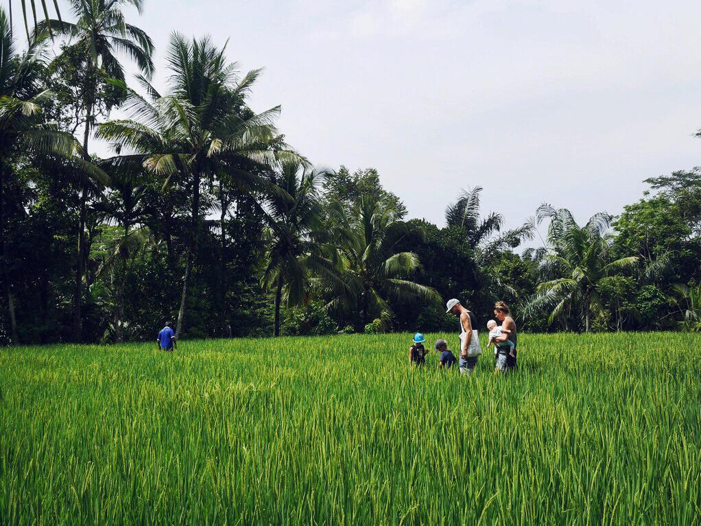 Bali_folkesson_2