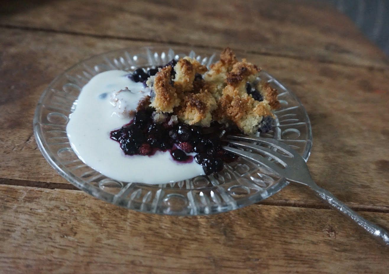 blåbärspaj med vaniljsås paleo